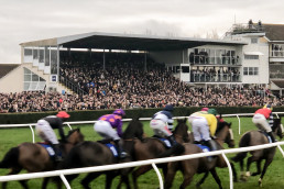 Wincanton Racecourse near Patson Hill Holiday cottages West Dorset